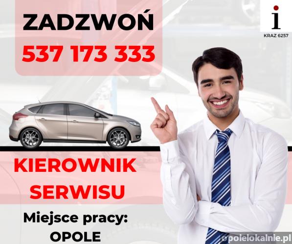 Kierownik Serwisu Samochodowego [PRACA]