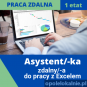 Asystent zdalny do pracy z Excelem